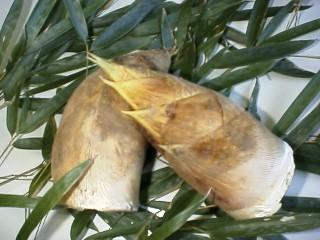 竹の子釜めし